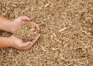play ground mulch