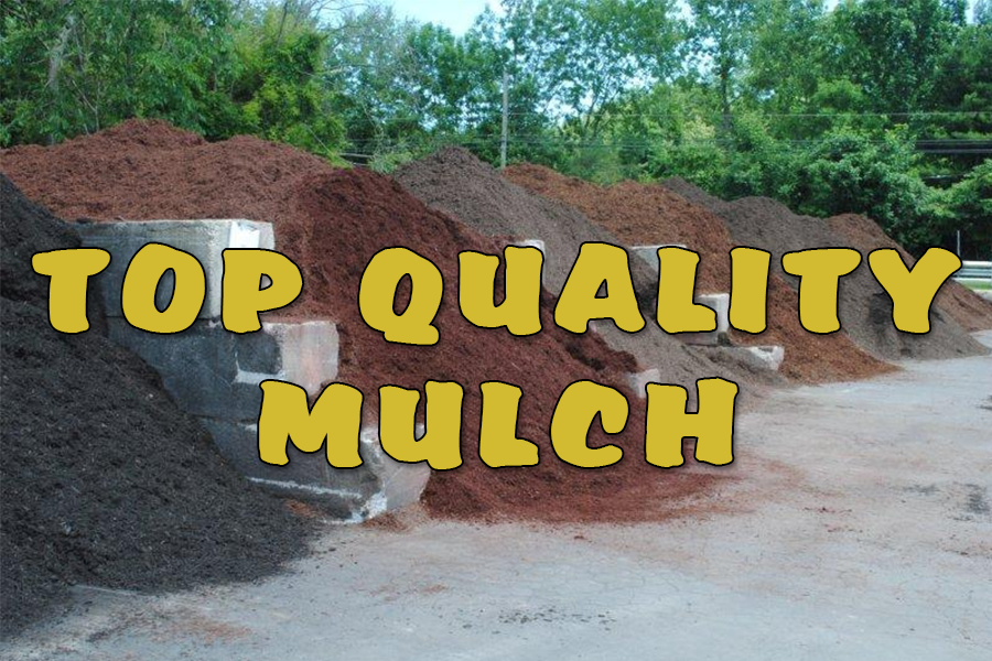 Double Shredded Black Dye mulch delivery Folcroft 19032