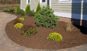 mulched-planting-bed